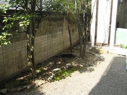 Garden before3