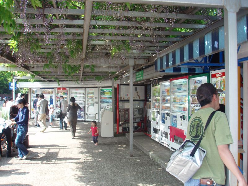 Vending Machine Corner