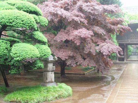 Heinrinji Zen Temple3