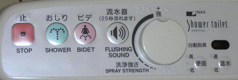 Toilet controls