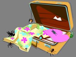 Bug suitcase
