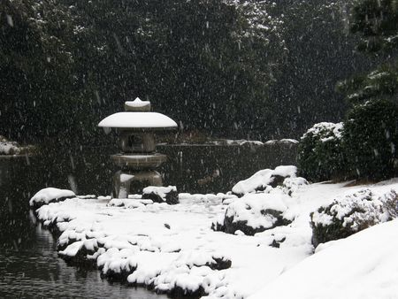 Shinjuku Gyoen in snow