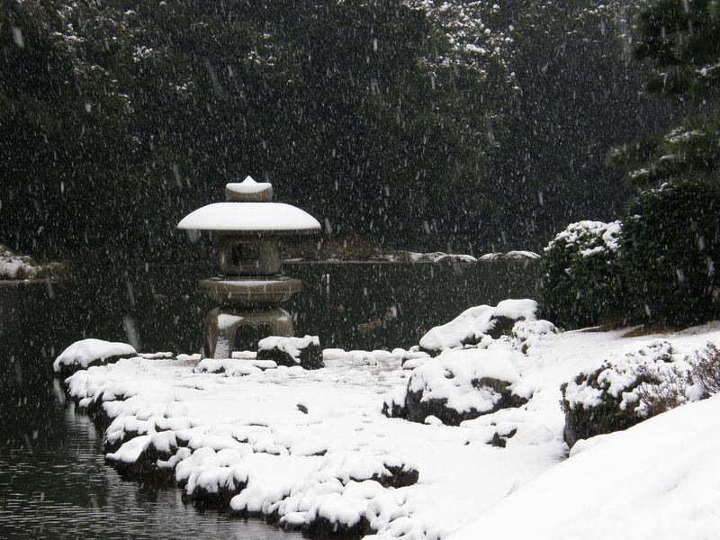 Shinjuku Gyoen in snow