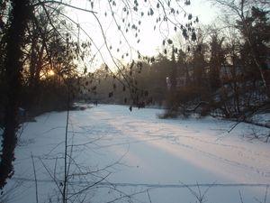 Frozen lake in Berlin